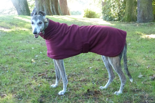 Greyhound Coat in Bramble