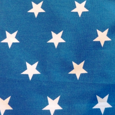 Blue with White Star Dog Bandana