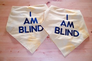 "Milgi Coats - ""I am blind"" embroidered bandana for dogs"