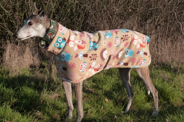 greyhound lurcher whippet fleece coat in woodland creatures design with woodland creatures trim