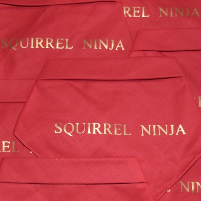squirrel ninja greyhound bandana whippet bandana