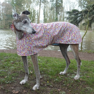 summer floral greyhound walking out coat