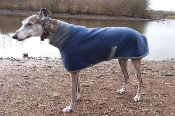 greyhound fleece coat in french navy and charcoal design