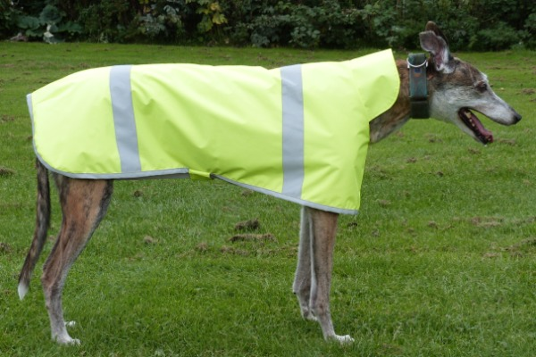 Hi Viz Greyhound Coat Yellow