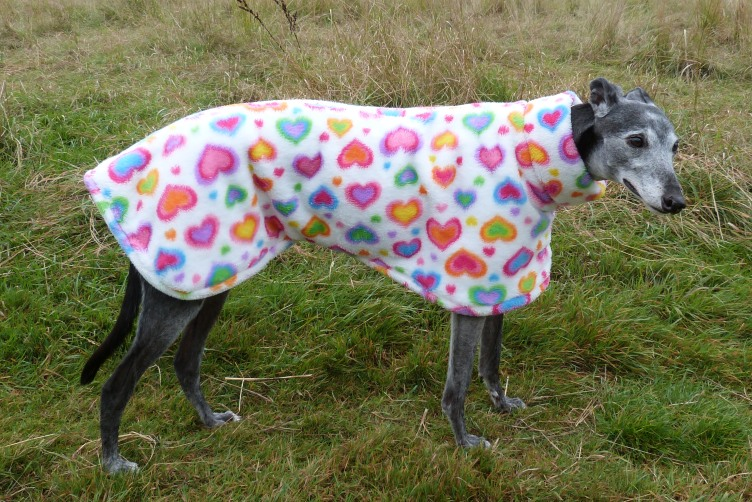 Rainbow Hearts fleece for Greyhounds Lurchers Whippets