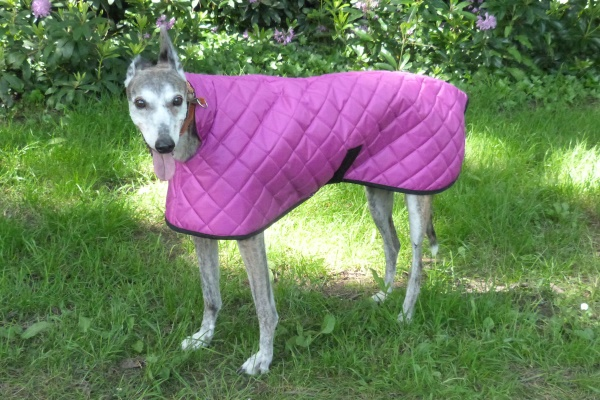 cerise pink greyhound quilted coat