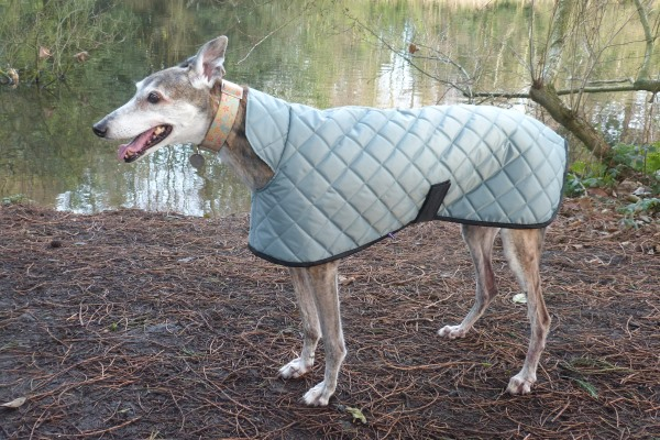 Sage Green Quilted Greyhound Coat